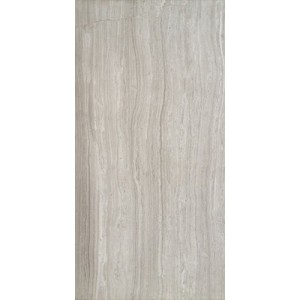 TRAVERTINE silver polished 6x3 tile
